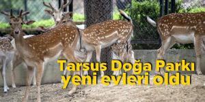 Tarsus Doğa Parkı, 7 yeni sakinine kavuştu