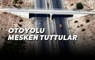 Uyuşturucuyu Tarsus'ta nakil ederken yakalandılar